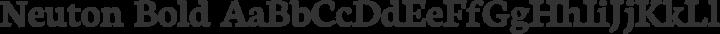 Neuton Bold free font