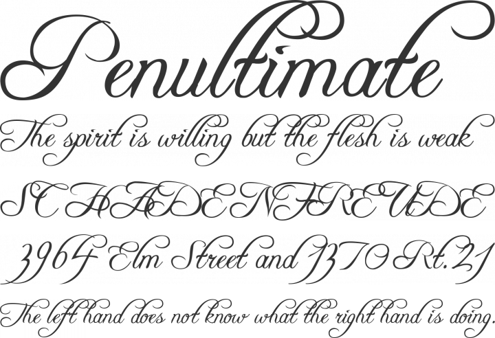 Freebooter Script Font Phrases
