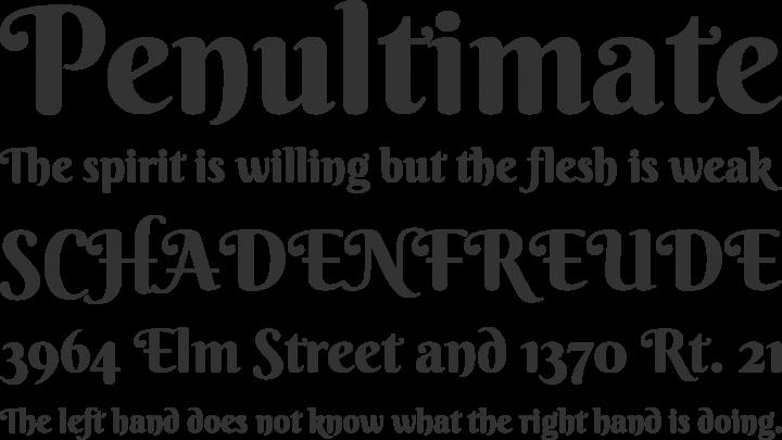Berkshire Swash Font Phrases