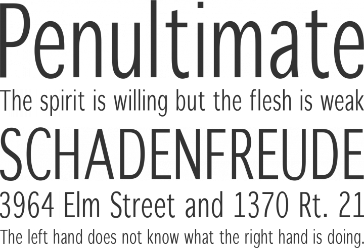 WinterthurCondensed Font Phrases