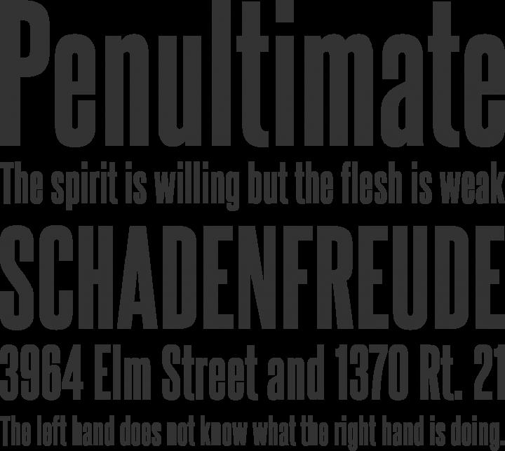 Steelfish Font Phrases