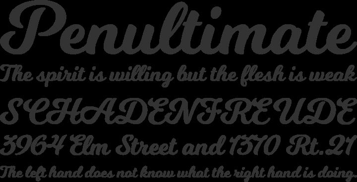 Milkshake Font Phrases