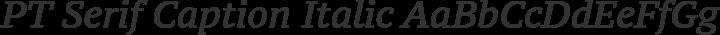 PT Serif Caption Italic free font