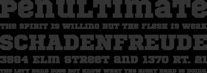 Sports-fresh-free-fonts-2012