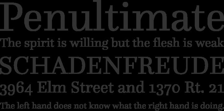 Questa Font Phrases