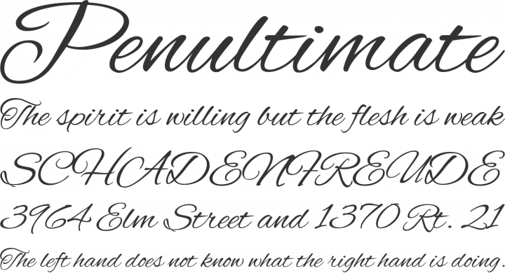 Alex Brush Font Phrases